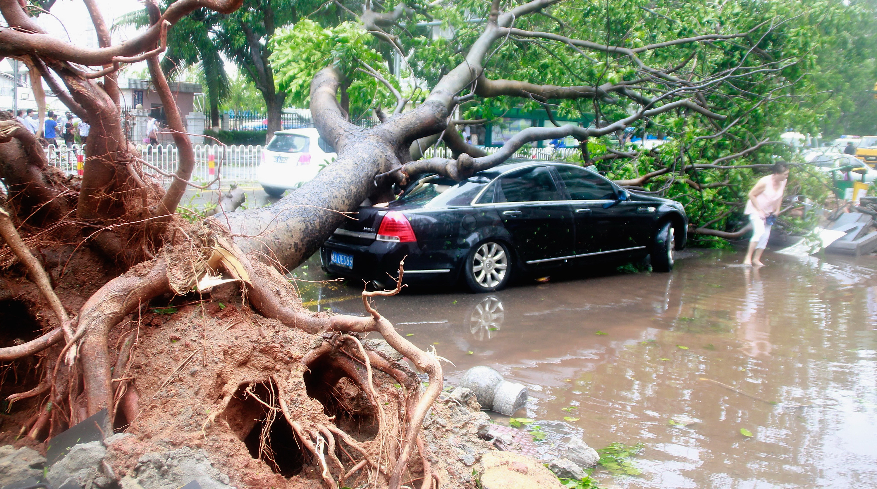 127590682 - Тайфун Винсент обрушился на Гонконг и Гуандун