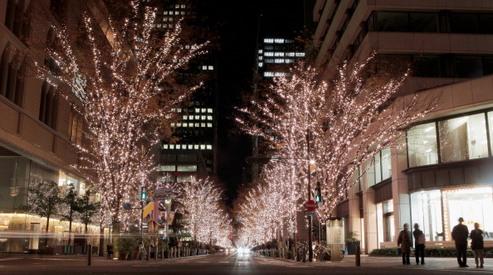 136037648 - Американцев подозревают в убийстве студентки в Токио