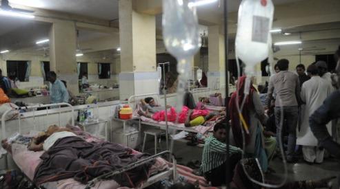 144930054 - Свиной грипп в Индии будут лечить в частных клиниках