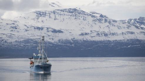 145582524 - Китай закрепился в Арктическом совете