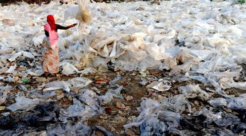 94674171 - В Индии хотят запретить пластиковые пакеты