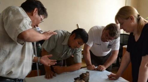 svfu - Ископаемую  собаку изучат якутские и бельгийские палеонтологи