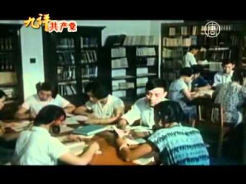 Девять комментариев о коммунистической партии — часть 6