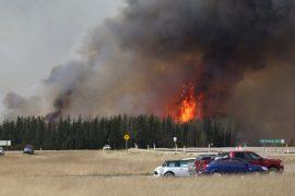 Площадь пожаров в Канаде немного сократилась