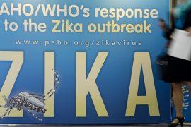 ВОЗ не поддержала отмену Олимпиады из-за Зики