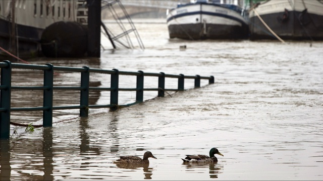 Наводнение во Франции стихает, начинается уборка