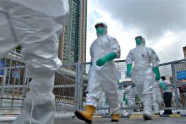В Гонконге уничтожили тысячи птиц из-за H7N9