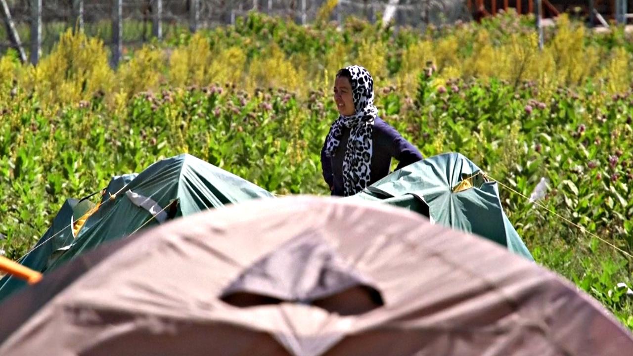 Беженцы пытаются попасть в Евросоюз через Венгрию