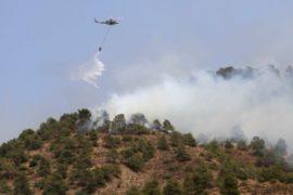 Пожары на Кипре принесли человеческие жертвы