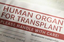 Китай: до 1,5 миллионов жертв изъятия органов