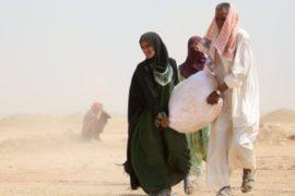 ООН: в Ираке ожидается до 3 млн новых переселенцев