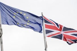 Британцы проголосовали «За»