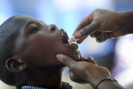 Конго нуждается в вакцинах от жёлтой лихорадки