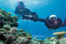 Следить за рифами помогают современные технологии