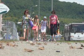 Полчища саранчи испортили отдых туристам в Сочи