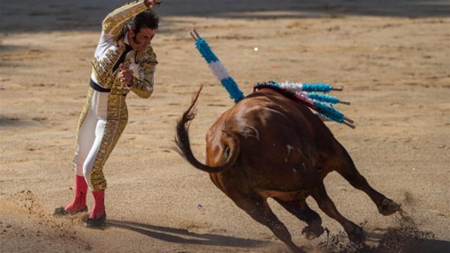 Сан-Фермин начался с протеста защитников животных