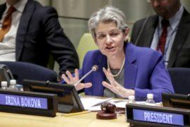 ЮНЕСКО: Всемирное наследие под угрозой из-за войн