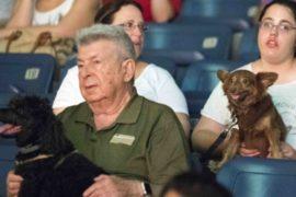 В Тель-Авиве на показ мультфильма пригласили собак