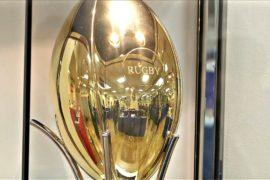 Мяч из золота выставили в магазине Токио