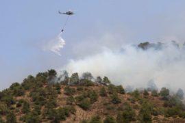 Греция: на острове Хиос объявили ЧП из-за пожаров