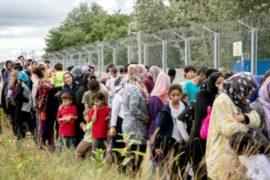 Мигранты голодают, требуя открыть границу Венгрии