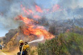 Власти Калифорнии: пожары не утихнут до конца августа