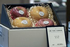 Антикоррупционный закон угрожает экономике Южной Кореи