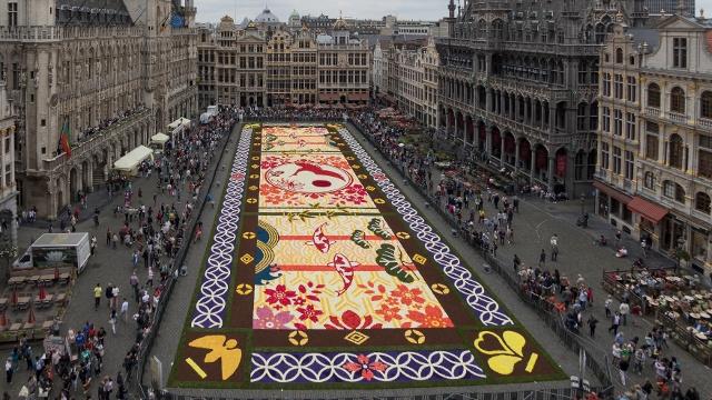 Цветочный ковёр соорудили в центре Брюсселя