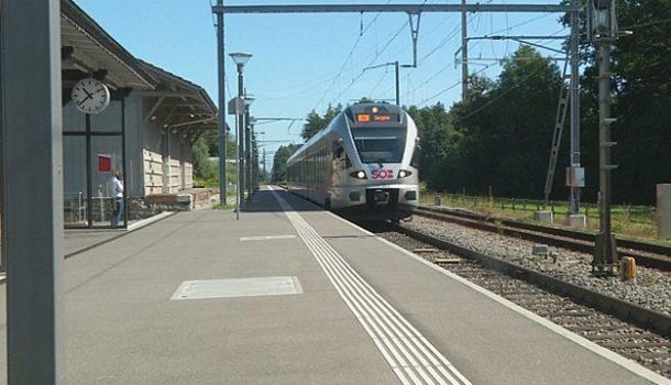 Мужчина сножом напал напассажиров поезда вШвейцарии