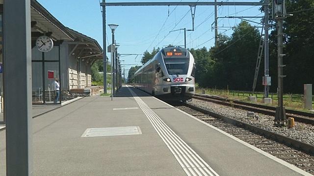 Умерла жертва нападения на поезд в Швейцарии