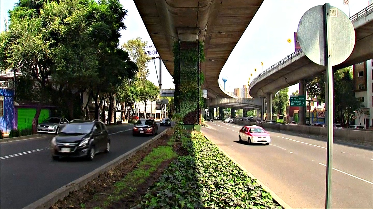 Мексика: вертикальные сады против загрязнения