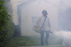В Сингапуре Зикой заболело более 40 человек