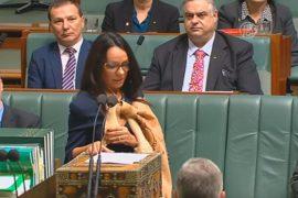 Женщину-аборигена впервые избрали в парламент Австралии