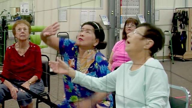 США: сидячий волейбол для престарелых