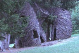 В Италии вырастет «живой» храм из деревьев