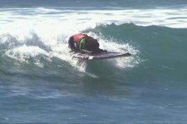 Собачий сёрфинг под Лос-Анджелесом: кто лучший?