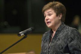 Болгария назначила нового кандидата на пост главы ООН