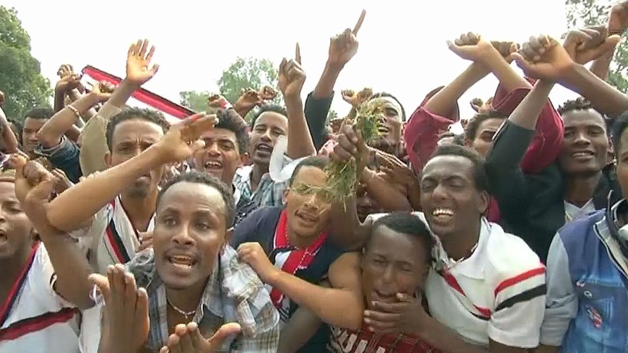 Власти Эфиопии ввели режим ЧП в ответ на протесты