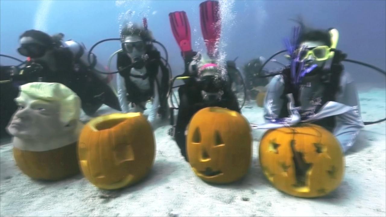 Тыквы на тему выборов в США – на подводном конкурсе