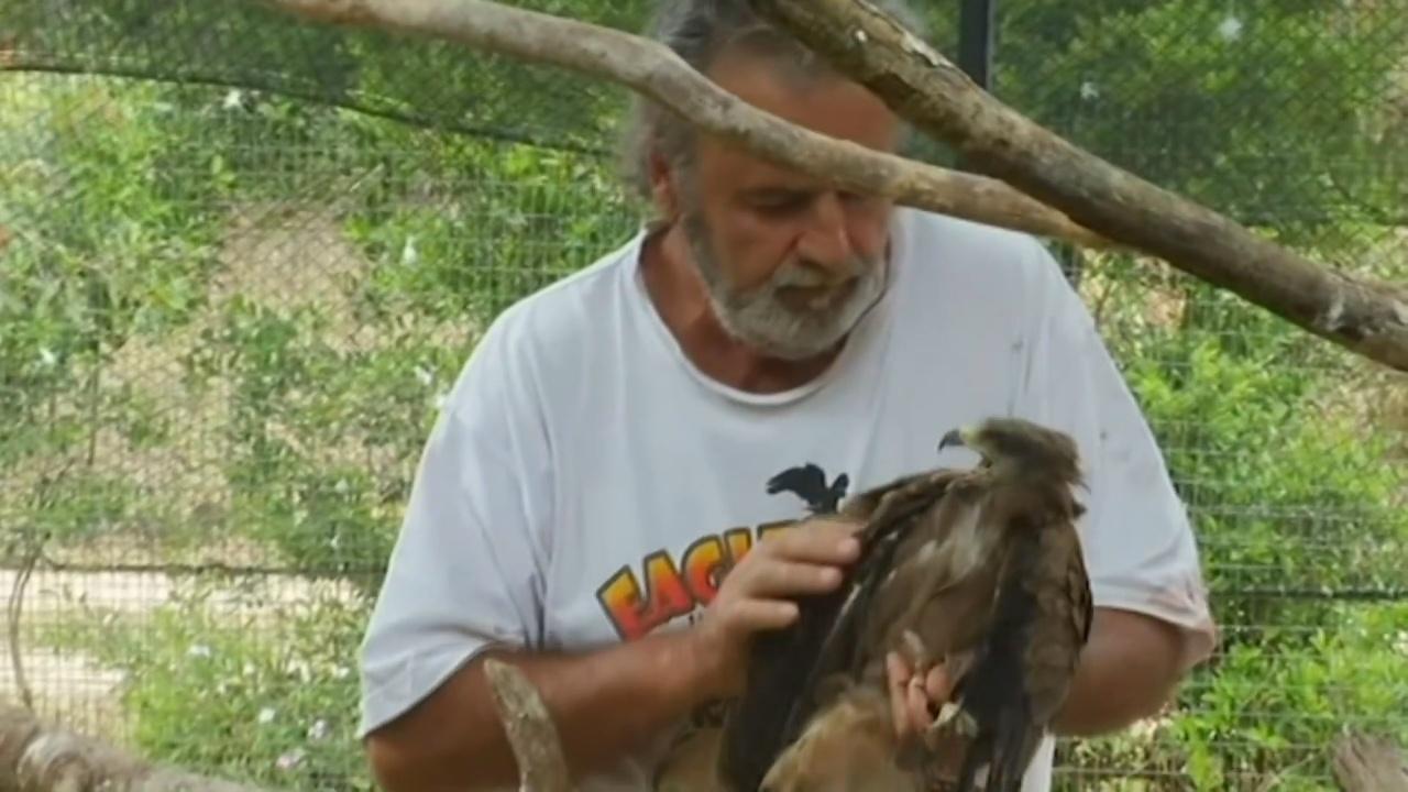Австралиец готов передать в дар приют для животных