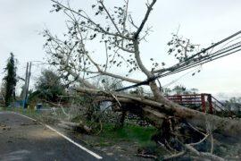 На север Филиппин обрушился супертайфун Хайма