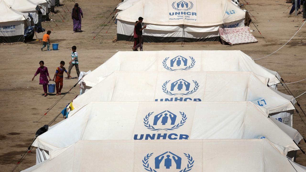 Сотни жителей Мосула ежедневно прибывают в лагерь Дебага