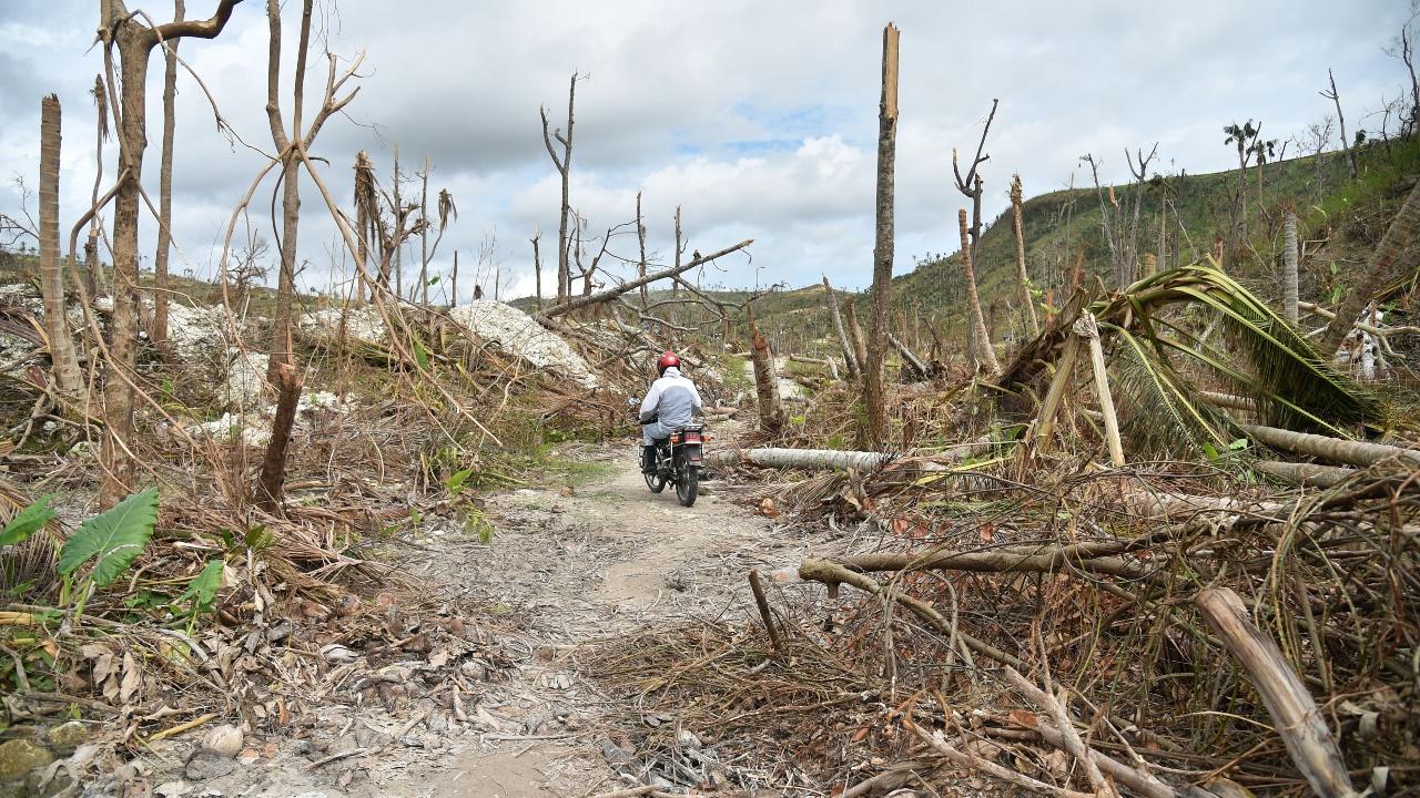Последствия урагана на Гаити: холера и разрушенные дороги