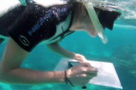 Обыватели помогают учёным исследовать Большой Барьерный риф