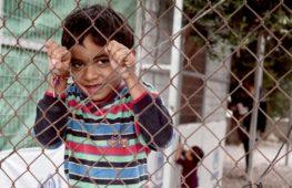 Тысячи мигрантов не могут покинуть остров Лесбос