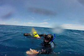 17 часов в океане: австралийского дайвера унесло течением