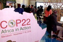 На климатической конференции обсуждают проблемы Африки