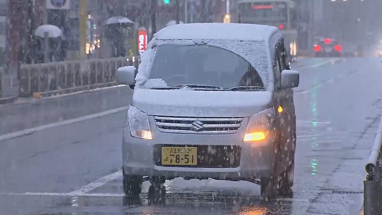 В Токио выпал первый за 54 года ноябрьский снег