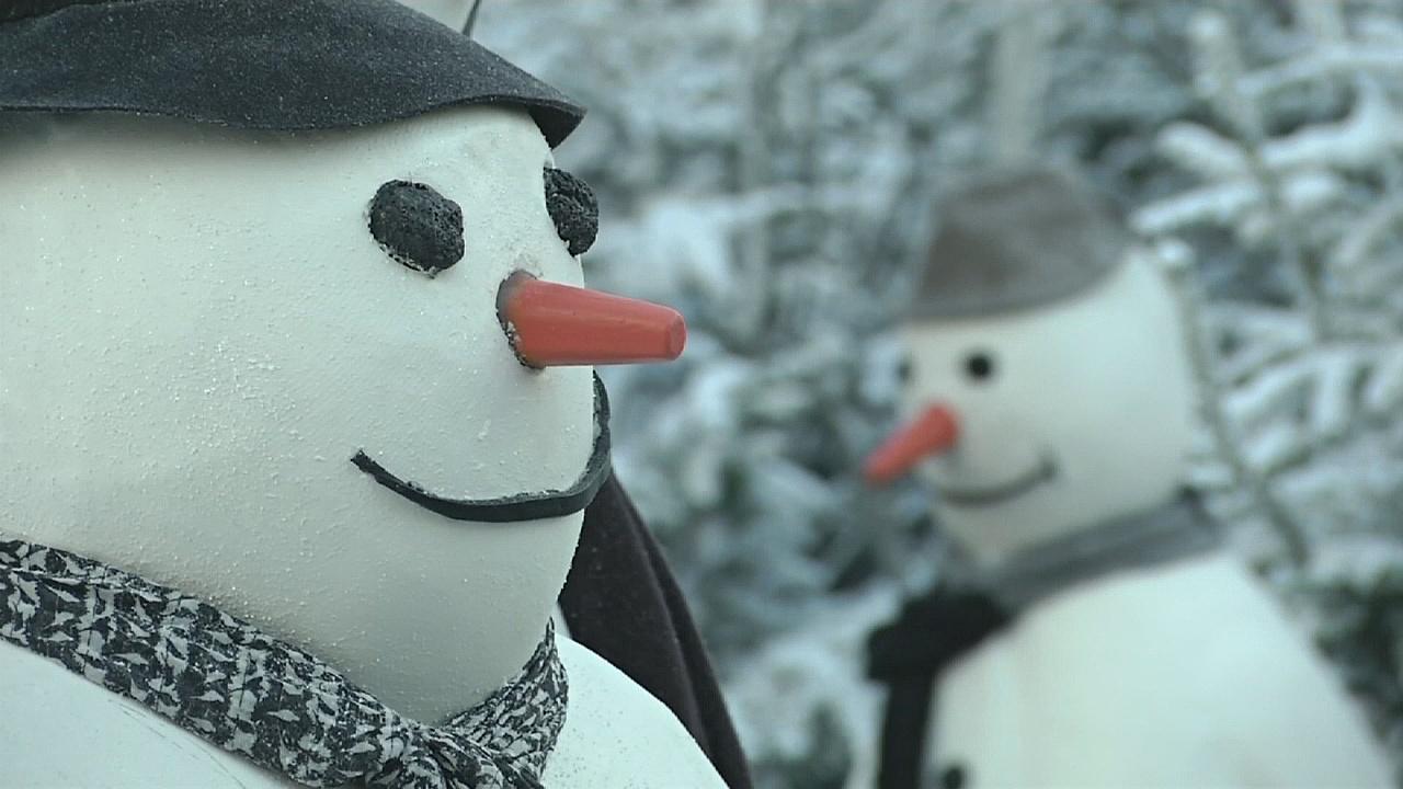 В Гётеборге открылась крупнейшая в Швеции рождественская ярмарка