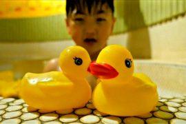 Япония: 1500 резиновых уток в традиционной бане